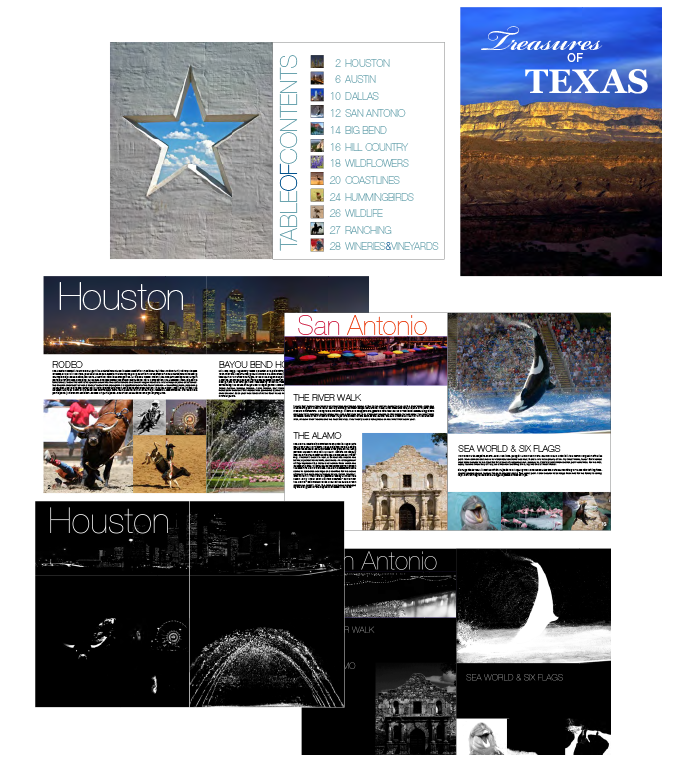 Texas Brochure Design